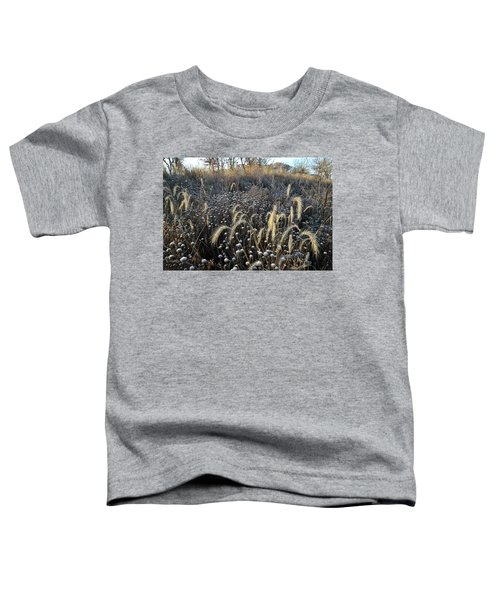 Frosted Foxtail Grasses In Glacial Park Toddler T-Shirt