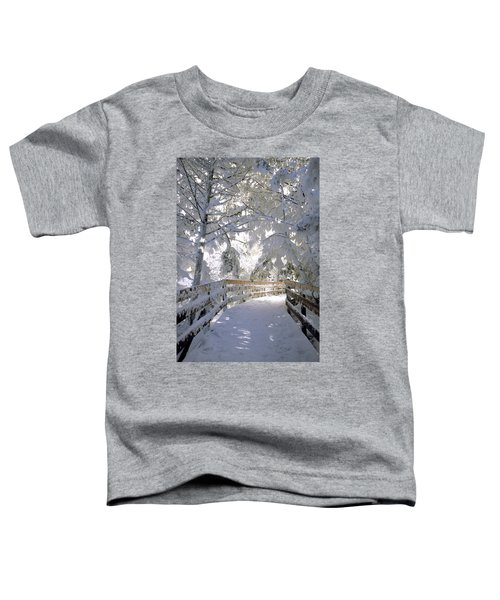 Frosty Boardwalk Toddler T-Shirt