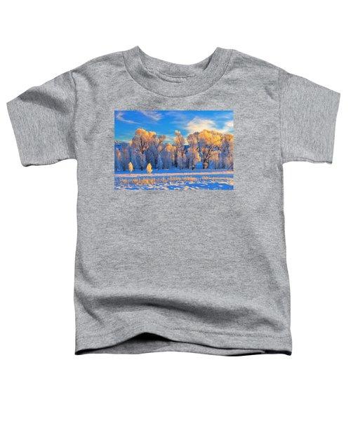 Frozen Sunrise Toddler T-Shirt