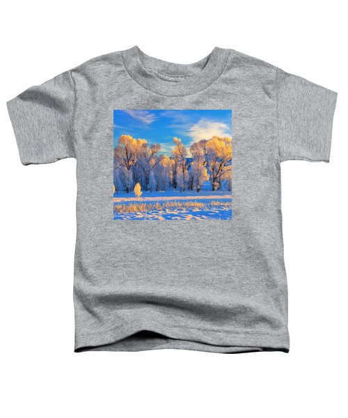 Toddler T-Shirt featuring the photograph Frozen Sunrise by Greg Norrell
