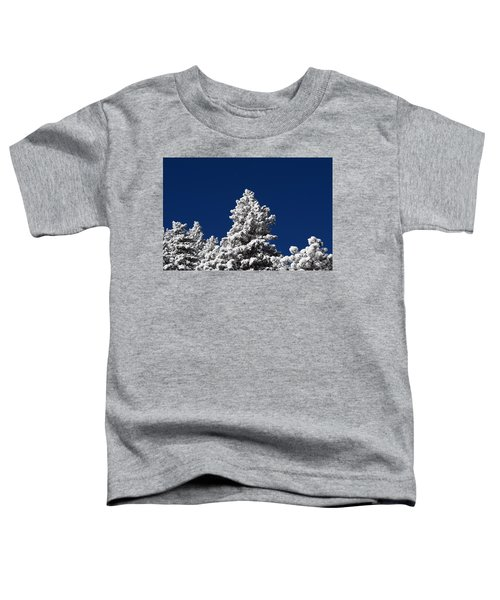 Frozen Tranquility Ute Pass Cos Co Toddler T-Shirt