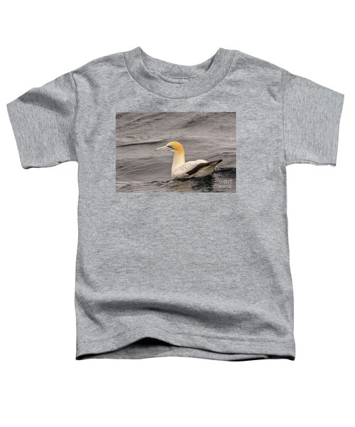 Gannet 5 Toddler T-Shirt