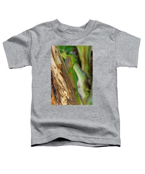 Gecko Up Close Toddler T-Shirt