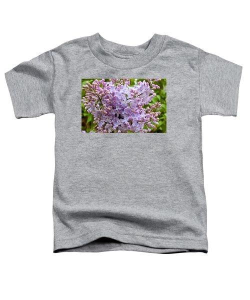 Gentle Purples Toddler T-Shirt