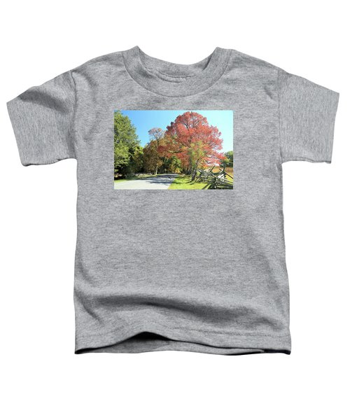 Gettysburg  In The  Fall Toddler T-Shirt