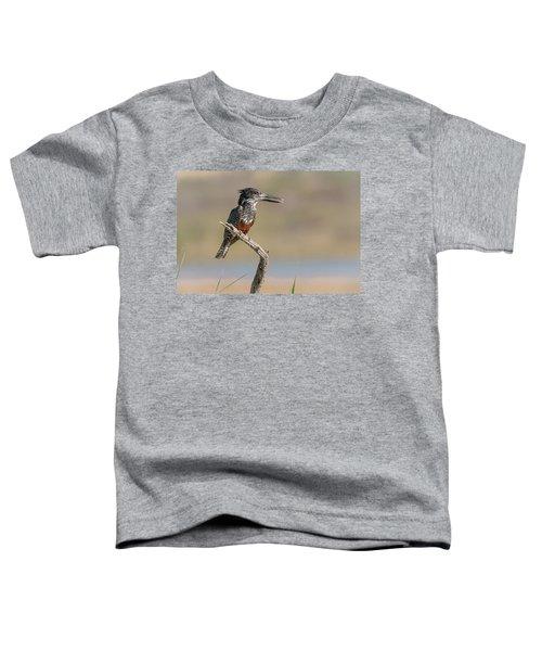 Giant Kingfisher Toddler T-Shirt