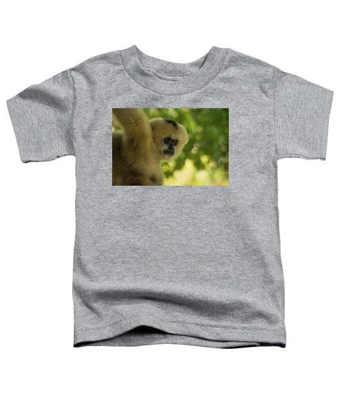 Gibbon Portrait Toddler T-Shirt