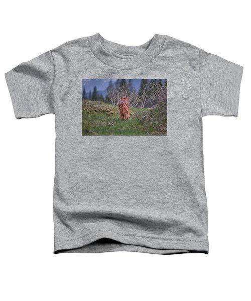 Going Home Toddler T-Shirt