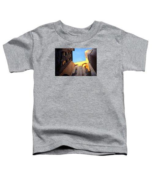 Golden Light In Avignon Toddler T-Shirt