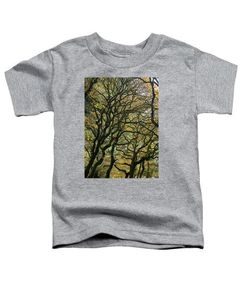 Golden Oaks Toddler T-Shirt