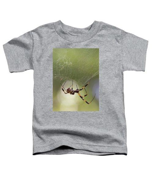 Golden-silk Spider Toddler T-Shirt