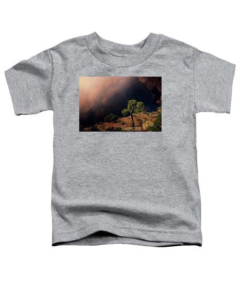 Grand Canyon Juniper Toddler T-Shirt