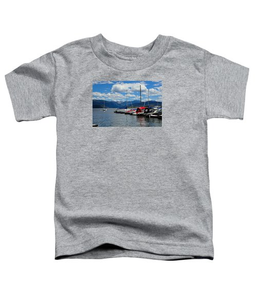 Grand Lake And Indian Peaks Wilderness Toddler T-Shirt