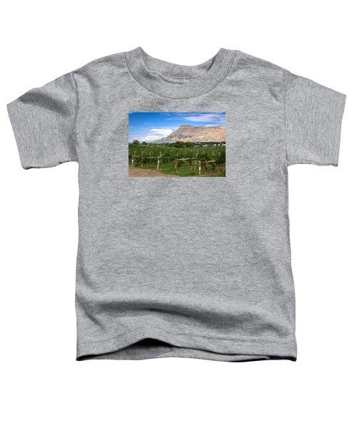 Grand Valley Vineyards Toddler T-Shirt