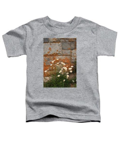 Granite Daisies Toddler T-Shirt
