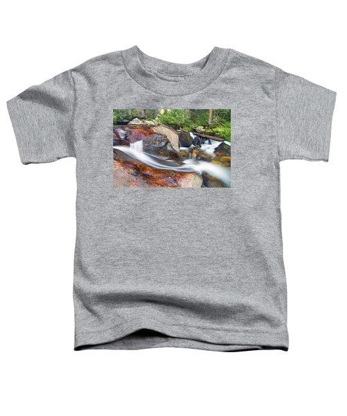 Granite Falls Toddler T-Shirt