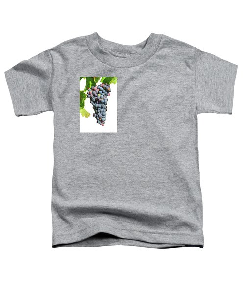 Grapes On Vine Toddler T-Shirt
