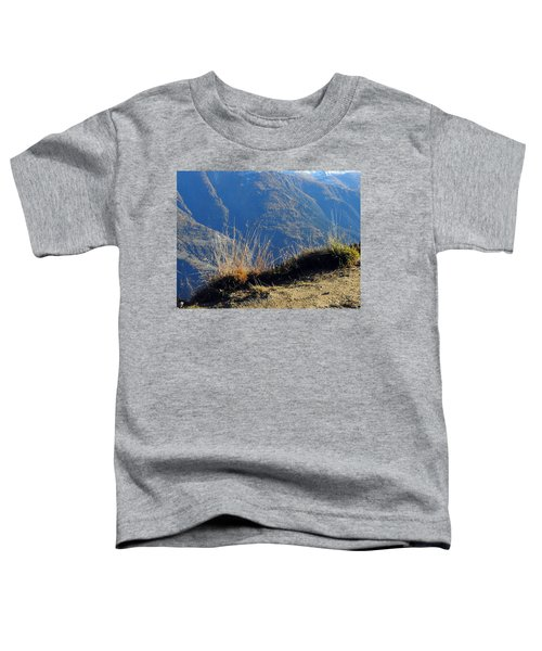 Grass In The Foreground, The Main Valley Of The Swiss Canton Of Valais In The Background Toddler T-Shirt
