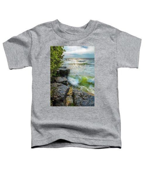 Great Lakes Toddler T-Shirt