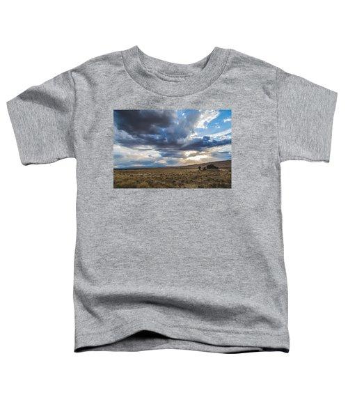 Great Sand Dunes Stormbreak Toddler T-Shirt