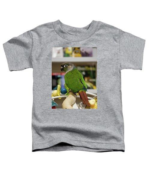 Green Cheek Conure Toddler T-Shirt