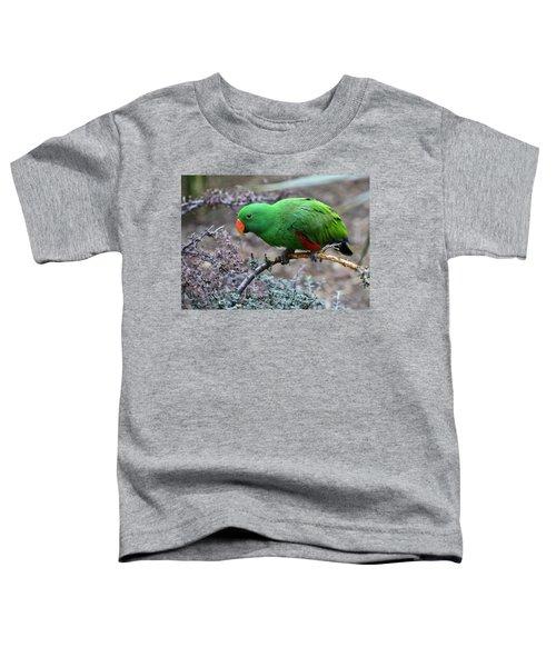 Green Male Eclectus Parrot Toddler T-Shirt