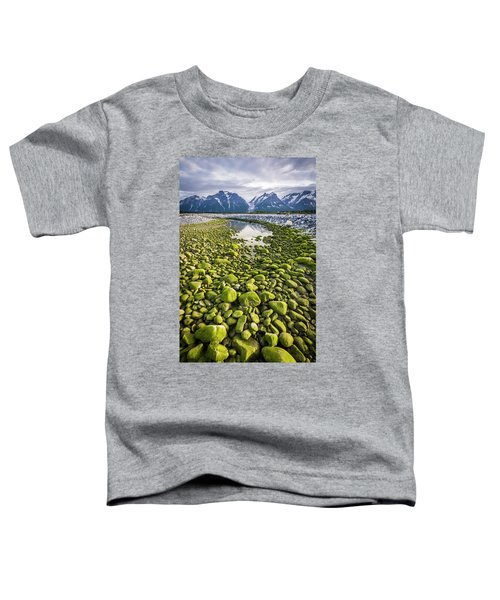 Toddler T-Shirt featuring the photograph Green Rocks by Whit Richardson