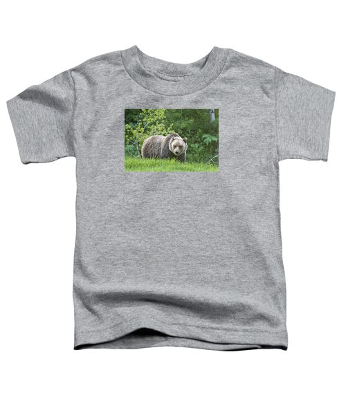 Grizzly Bear Toddler T-Shirt by Gary Lengyel