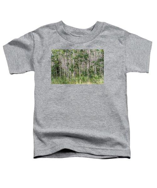 Grove Of Quaking Aspen Aka Quakies Toddler T-Shirt