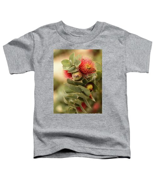 Toddler T-Shirt featuring the photograph Gum Nuts by Werner Padarin