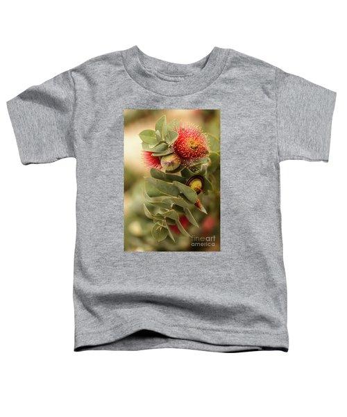 Gum Nuts Toddler T-Shirt
