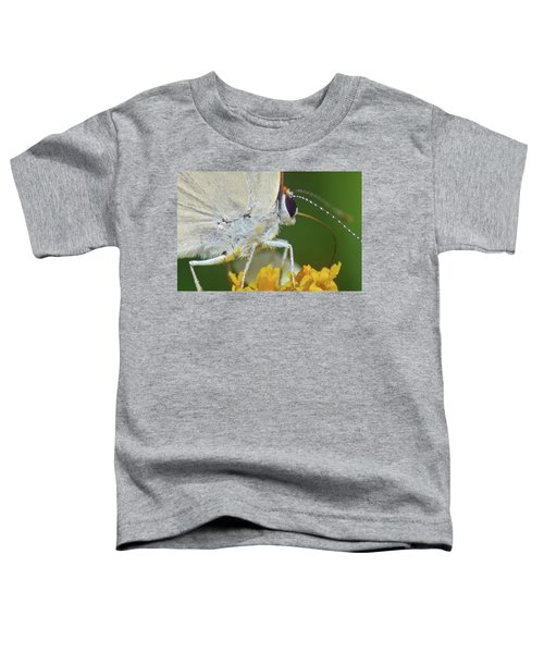 Hairstreak Closeup Toddler T-Shirt
