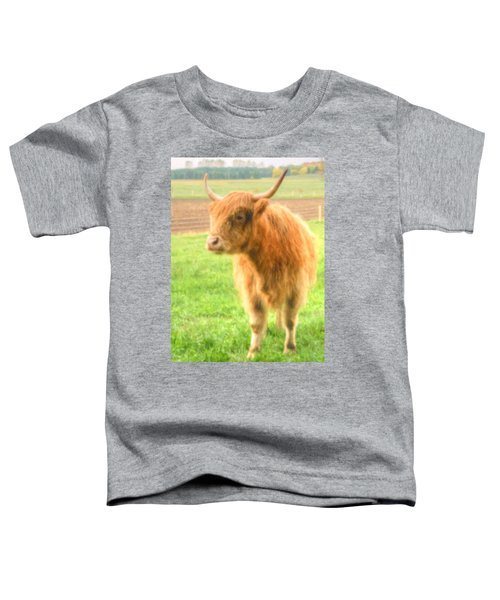 Hairy Coos Toddler T-Shirt