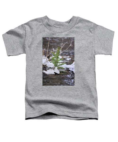 Hanging In There Toddler T-Shirt