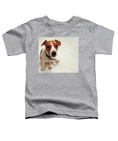 Happiness Is A Cute Puppy Toddler T-Shirt