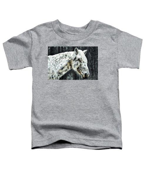 Hard Winter Toddler T-Shirt