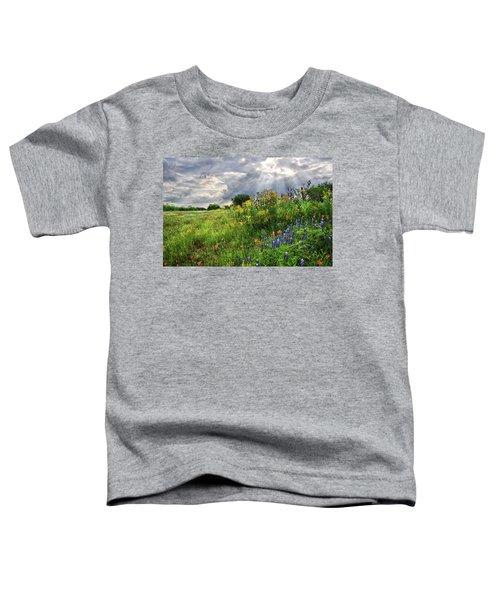 Heaven's Light  Toddler T-Shirt