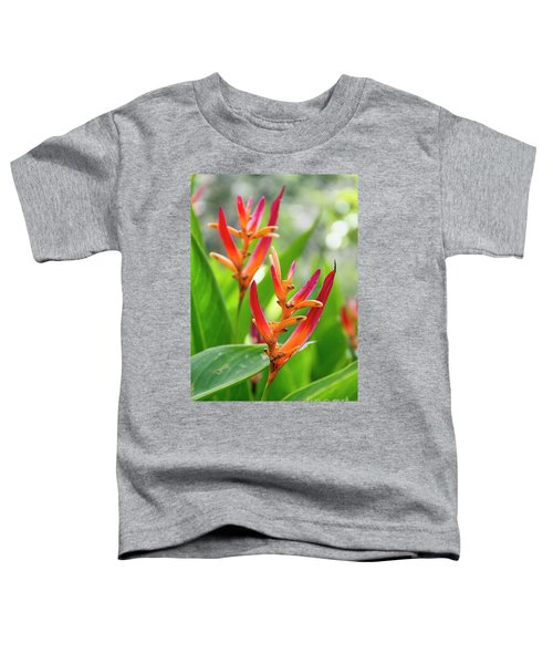 Heliconia Psittacorum Toddler T-Shirt