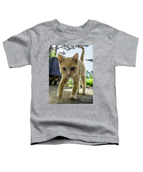 Hello Beautiful 136b Toddler T-Shirt