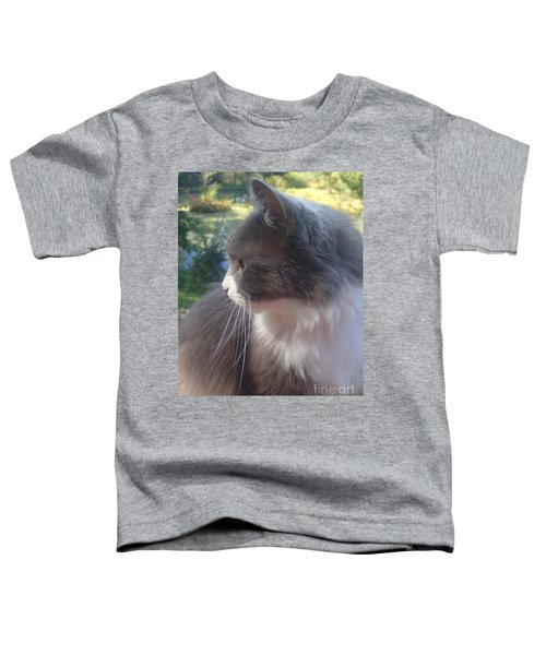 Here Kitty Toddler T-Shirt