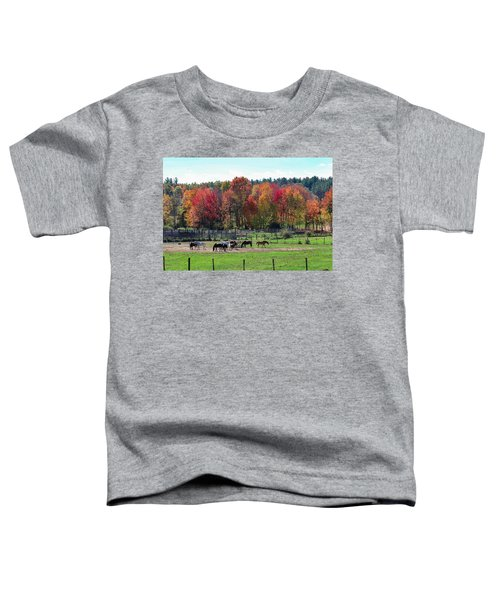 Heritage Farm In Easthampton, Ma Toddler T-Shirt