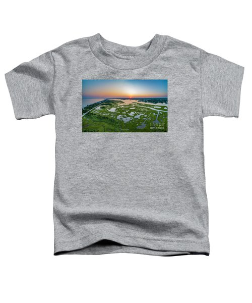 Hidden Beauty Pano Toddler T-Shirt