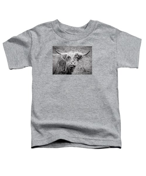 Highland Cow Toddler T-Shirt by Jeremy Lavender Photography