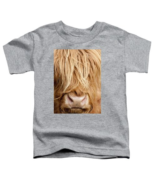 Highland Cow Toddler T-Shirt