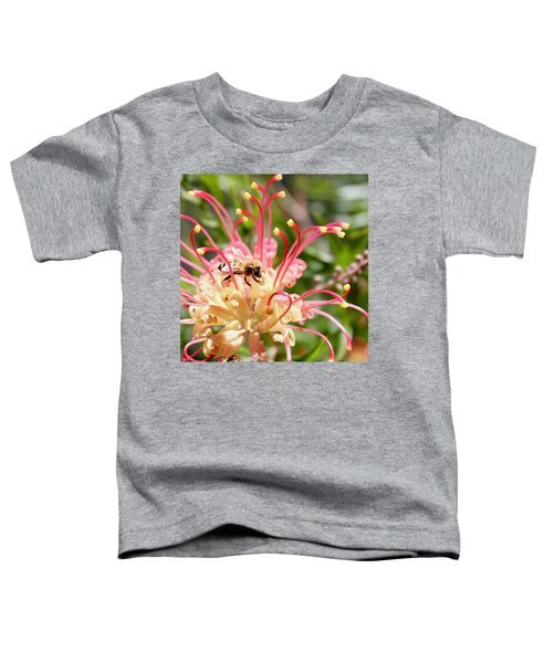 Honey Bee On Grevillea  Toddler T-Shirt