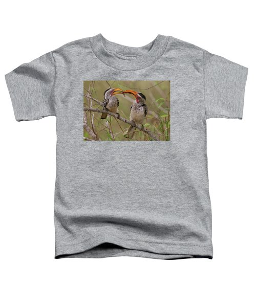 Hornbill Love Toddler T-Shirt by Bruce J Robinson