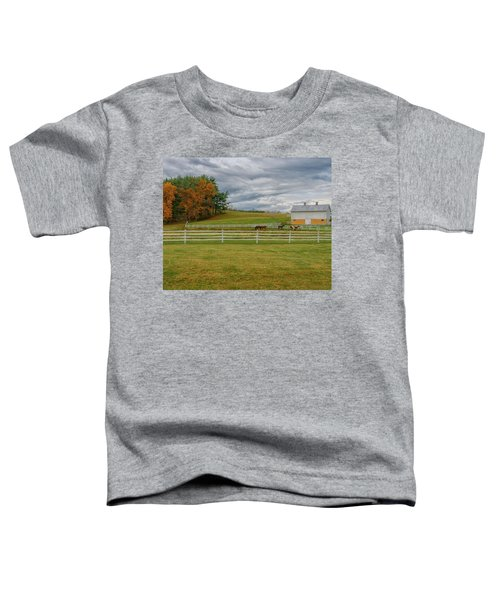 Horse Barn In Ohio  Toddler T-Shirt