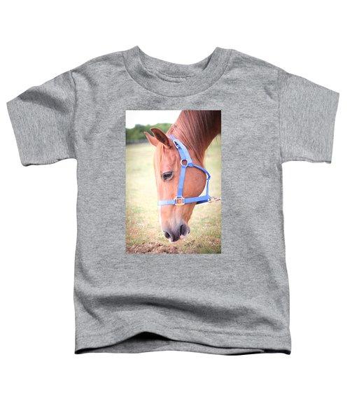 Horse Eating Grass Toddler T-Shirt