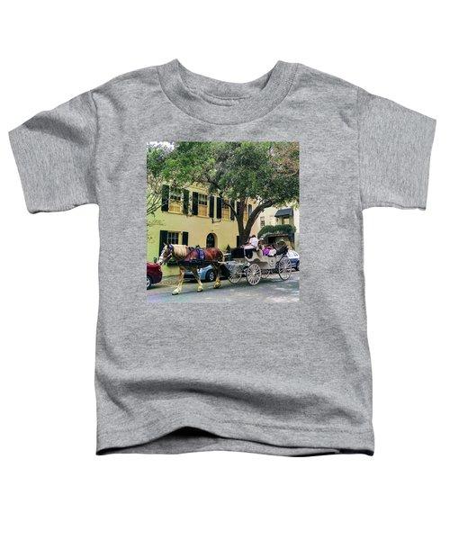 Horse Stories Toddler T-Shirt