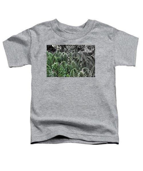 Horsetail Dewpoint Toddler T-Shirt